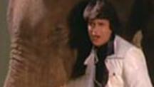 Watch Main Aur Mera Haathi full movie Online - Eros Now