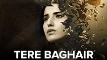 Tere Baghair