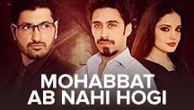 Mohabbat Ab Nahi Hogi